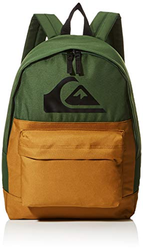 Quiksilver Everyday Backpack Color Block, Mochila. para Hombre, Greener Pastures, Einheitsgröße